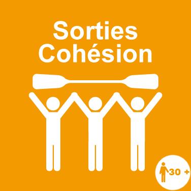 05-spotlight-cohesion